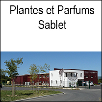 sabletplantes